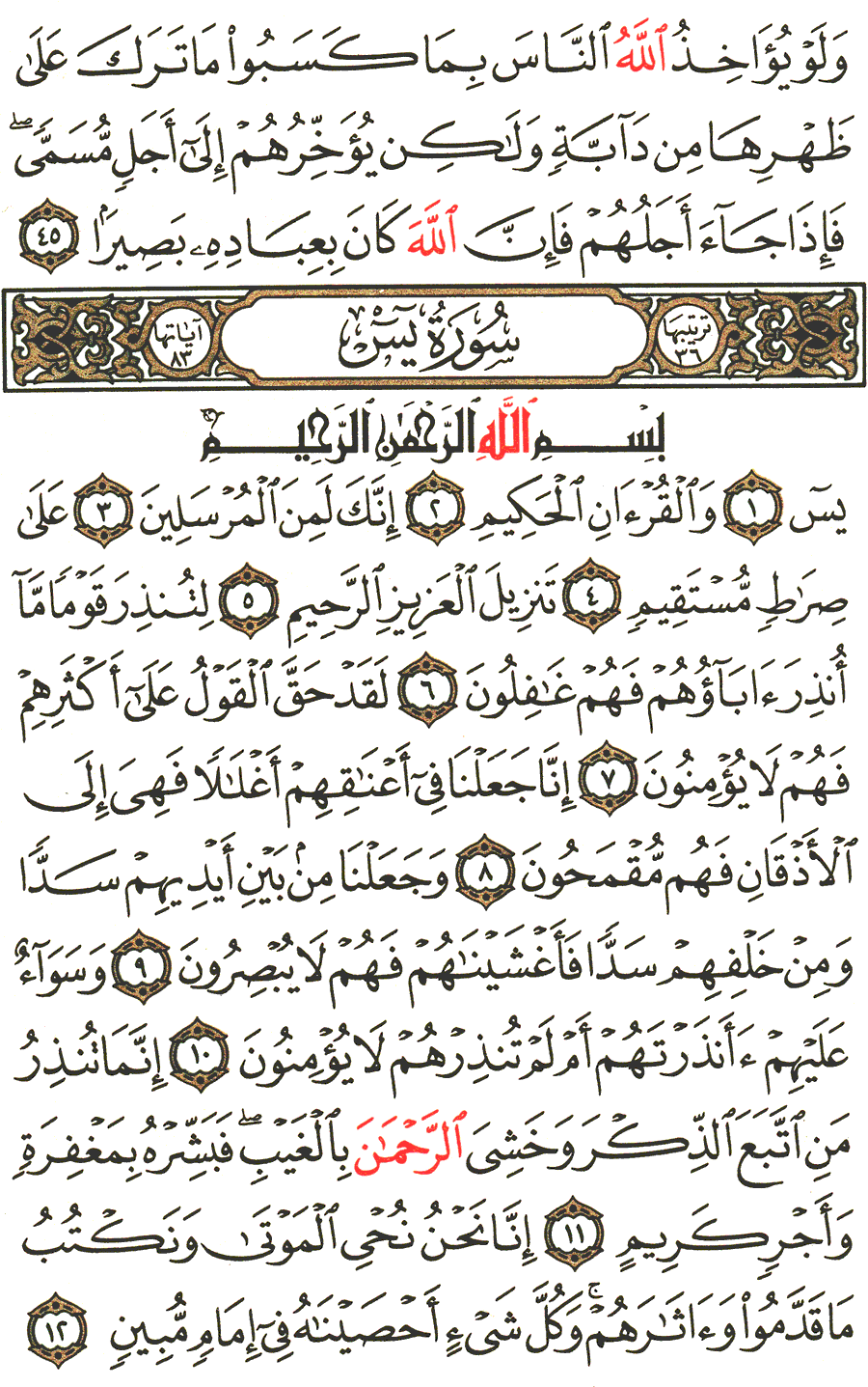 الصفحة رقم 440 من القرآن الكريم مكتوبة من المصحف