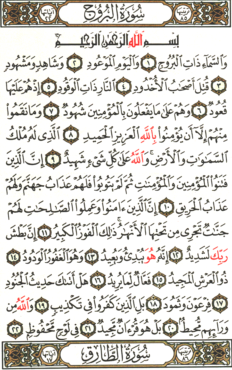 Page No 590  The Noble Quran