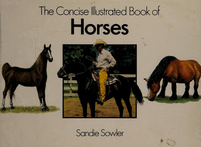 Concise Illustrated Book Horses by Sandie Sowler