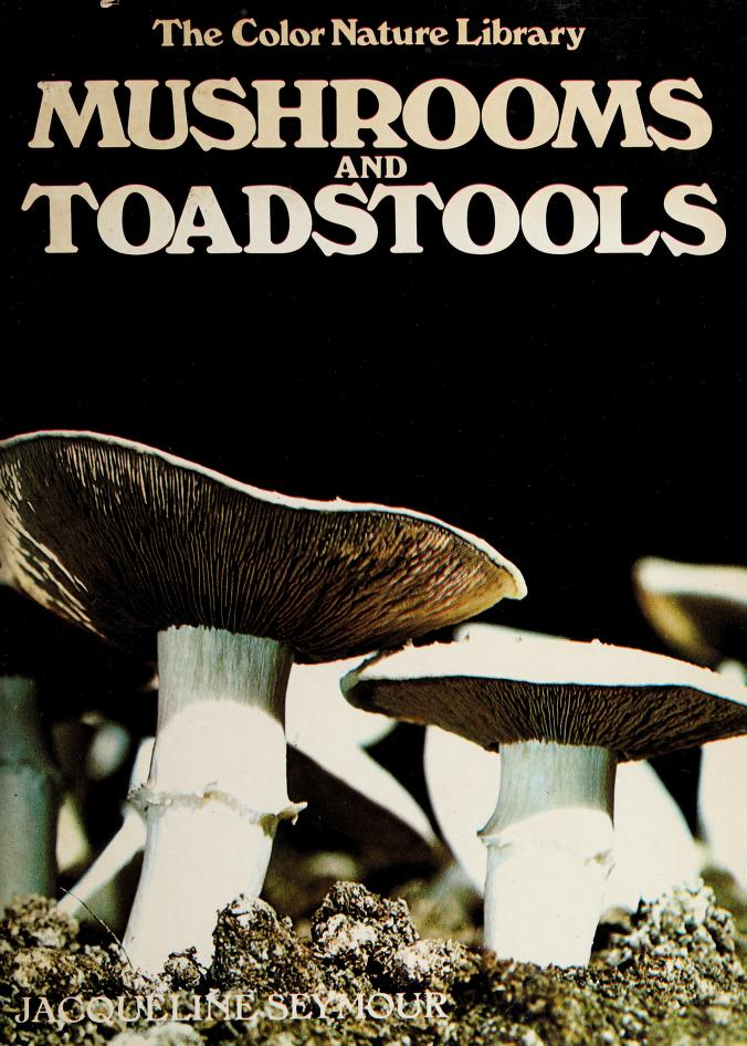 Mushrooms and toadstools by Jacqueline Seymour
